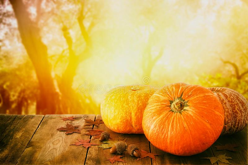 Pumpkins and autumn leaves on wooden table. thanksgiving and halloween concept.  stock photos