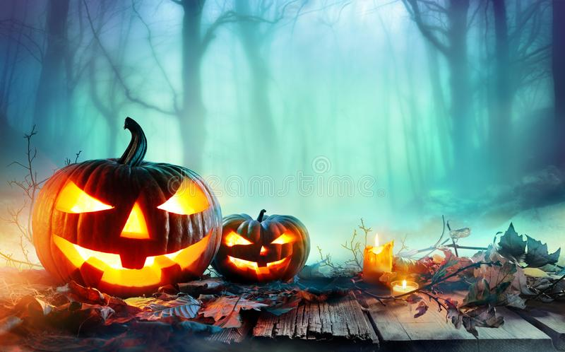 Pumpkins Burning In A Spooky Forest At Night. Halloween Background royalty free stock photos