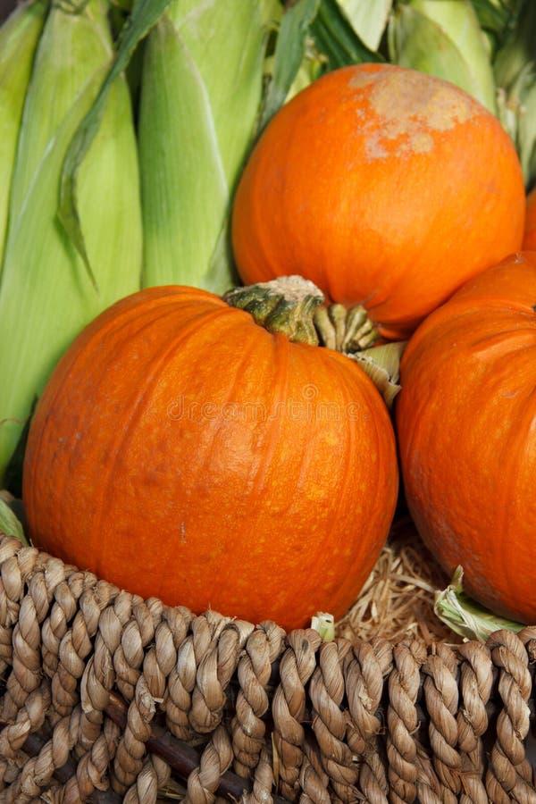 Pumpkins And Corn Stock Photos