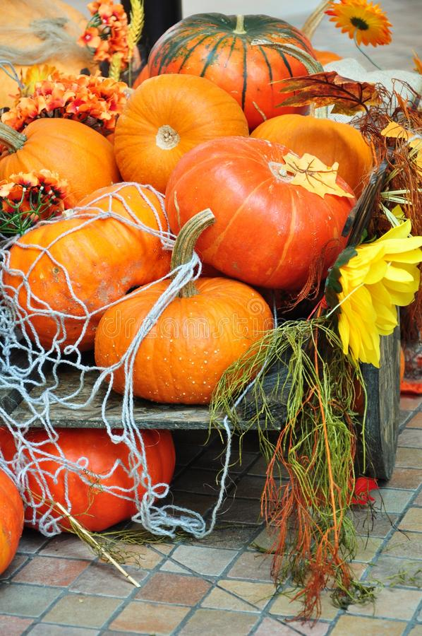 Download Pumpkins Halloween Decoration Stock Image - Image of heap, decorate: 21808121