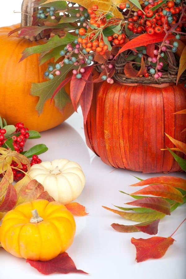 Download Pumpkins and fall beries stock image. Image of arrangement - 20738297