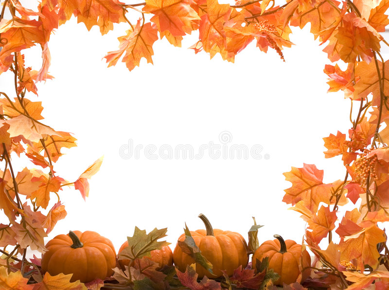 Pumpkins with fall leaves royalty free stock photos