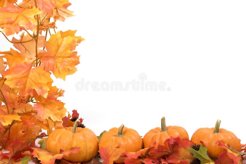 Pumpkins with fall leaves stock photography