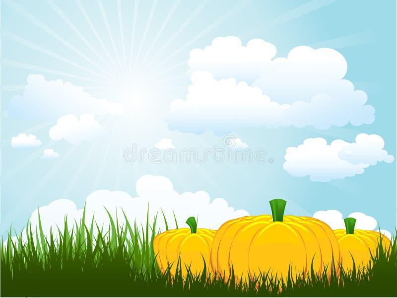 Download Pumpkins in grass stock vector. Image of cloud, cloudy - 15472413