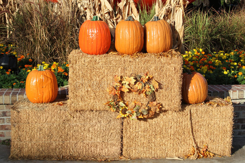Download Pumpkins and hay bales stock photo. Image of five, autumn - 26023374