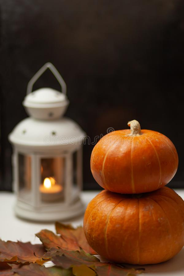 Pumpkins. Maple leaves. Autumn composition. Harvest royalty free stock images