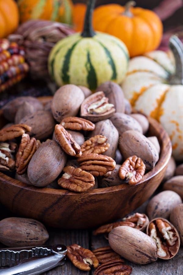Pumpkins, nuts, indian corn and variety of squash royalty free stock photo