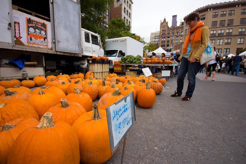Pumpkins NYC Farmers Market. NEW YORK CITY - OCT 26: Pumpkins at for sale at Union Square Greenmarket in NYC on Oct. 26, 2012. This world famous farmers' market stock photo