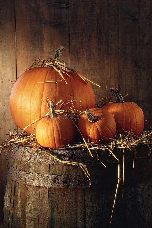 Free Pumpkins On Old Barrel Stock Images - 59901564