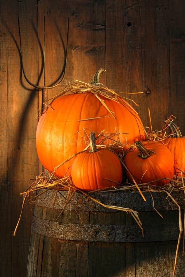 Free Pumpkins On Wine Barrel Royalty Free Stock Photos - 10845748