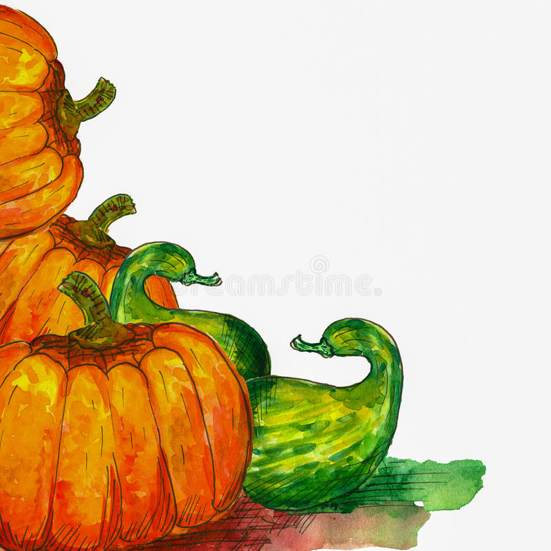 Pumpkins. Orange and green WATERCOLOR PUMPKINS BACKGROUND royalty free illustration