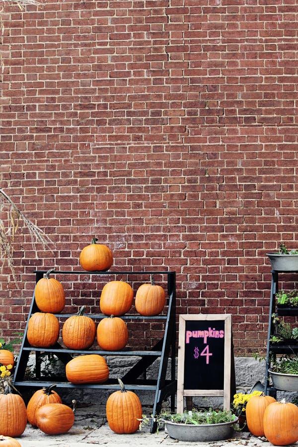 Pumpkins For Sale stock image