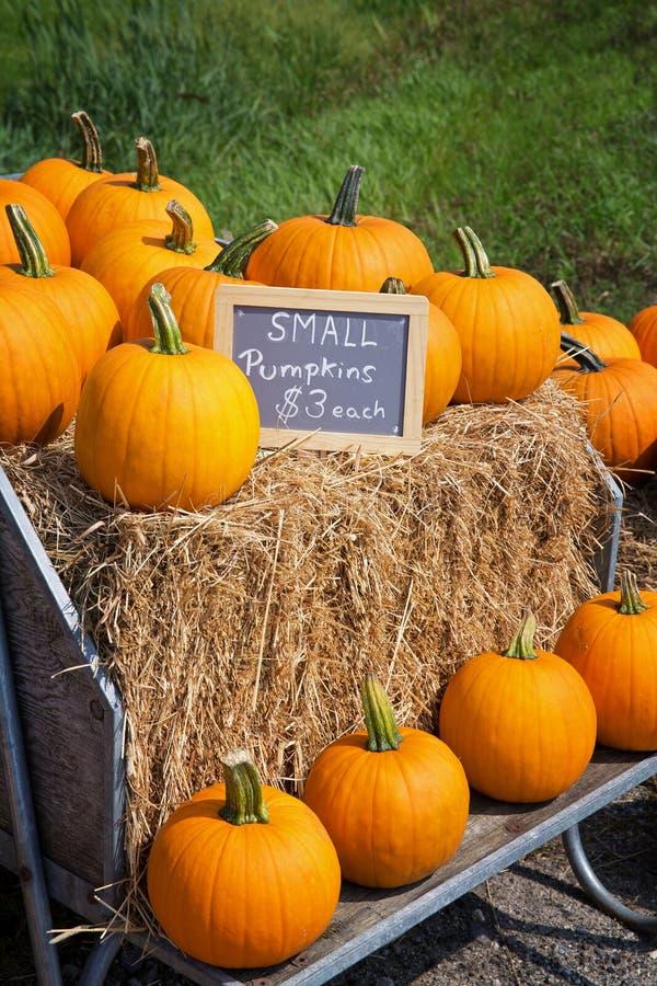 Pumpkins for sale at the roadside stock images