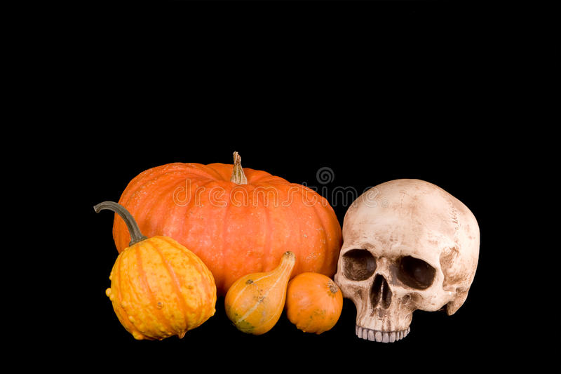 Pumpkins and skull royalty free stock image