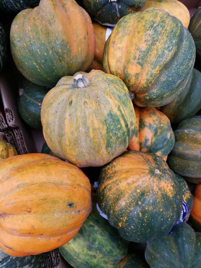 Pumpkins and squash stock images