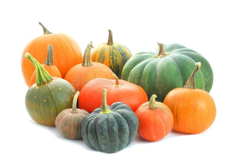 Pumpkins varieties stock images