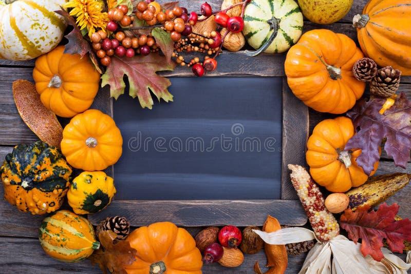 Pumpkins and variety of squash royalty free stock photo