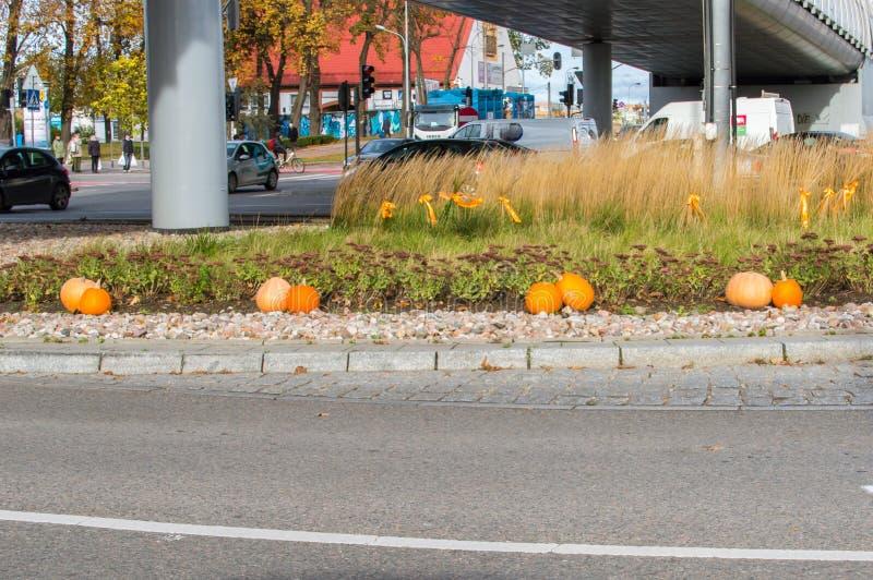 Pumpor för halloween på tvärgator i Gdansk nära Galeria Baltycka royaltyfri fotografi