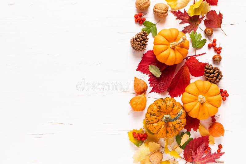 Pumpor för sluten höst med fallblad, bär, nötter på vit bakgrund tacksägelsedag eller helgdag, skörd arkivfoton