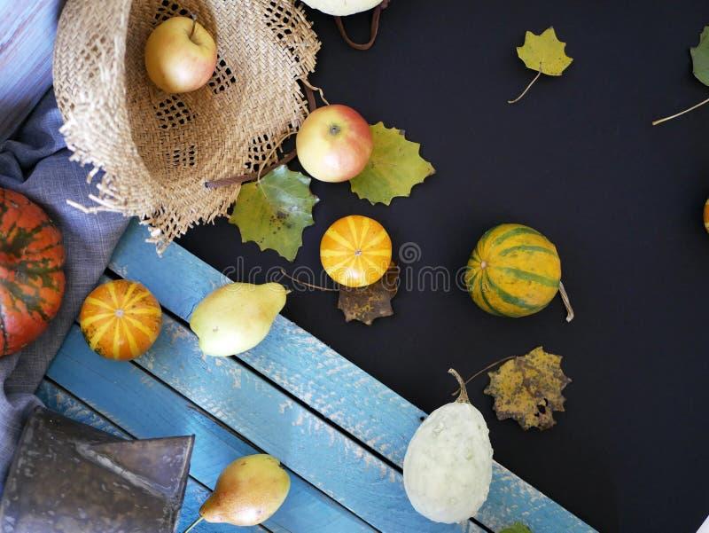 Pumpor päron, äpplen, grått tyg på en ljus trätabell, begrepp av matlagning för en säsongsbetonad hem- ferie royaltyfria foton