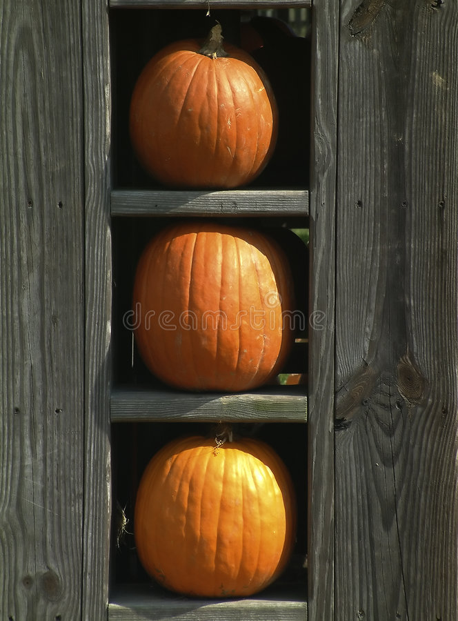Download Pumpor tre fotografering för bildbyråer. Bild av orange - 32463