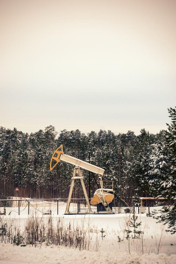 Pumpstålar och oljeplattform som placeras i skog royaltyfri foto