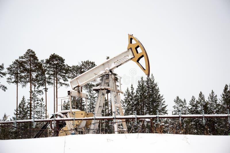 Pumpstålar som placeras i skog arkivbilder