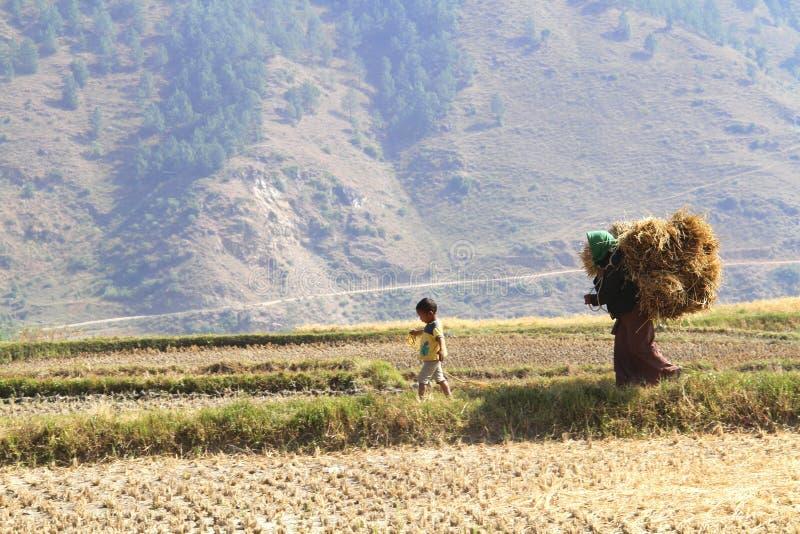 Punakha, Бутан - 7-ое ноября 2012: Неопознанный носить женщины стоковое изображение rf