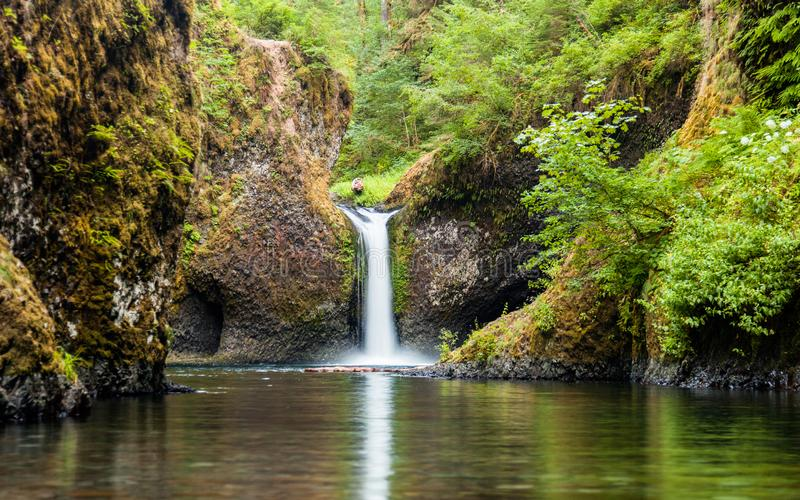 Punch Bowl Falls along the Eagle Creek Trail in Oregon, USA. With lush greenery royalty free stock image