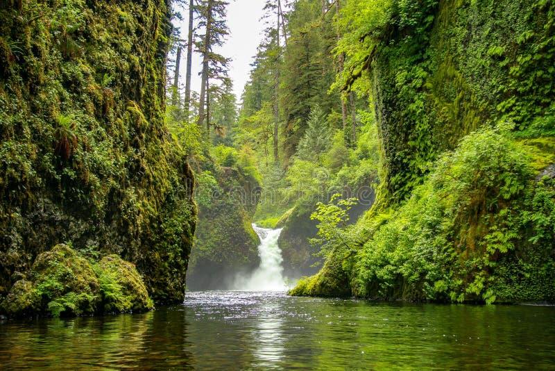 Punchbowl tombe sur Eagle Creek, près de Portland, l'Orégon photos stock