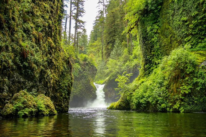 Punchbowldalingen op Eagle Creek, dichtbij Portland, Oregon stock foto's