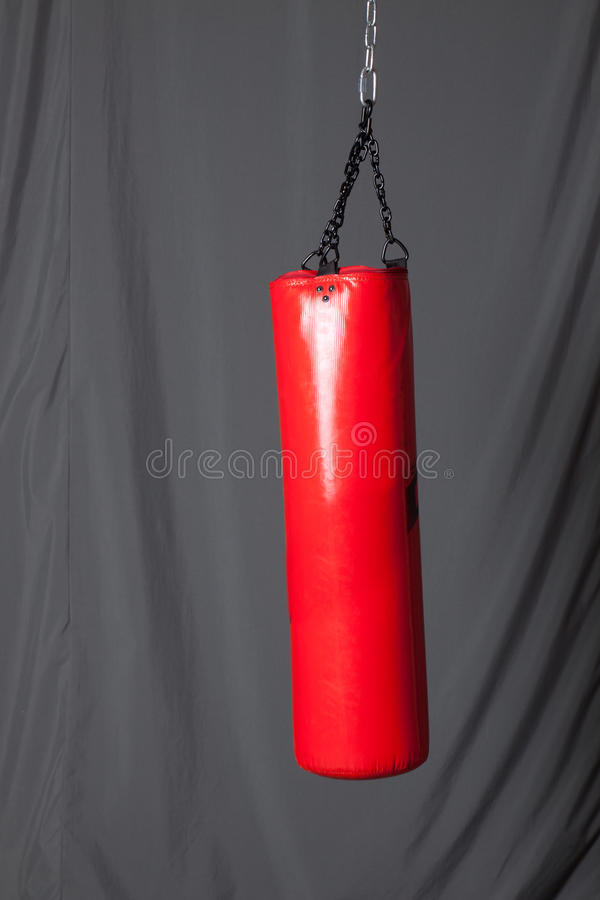 Download Punching bag in gym stock photo. Image of equipment, fighting - 23713534