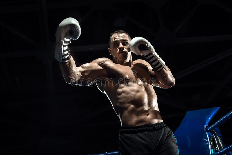 Punching boxer on boxing ring. Black bacground, horizontal photo stock photography
