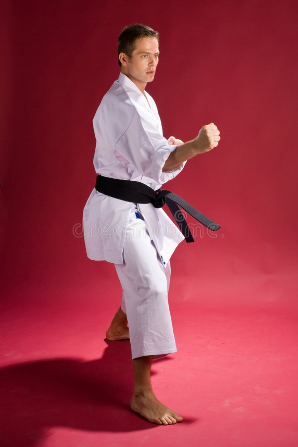Punching karate fighter. A model in a Karate Kimono with black belt(level) in a defensive pose, on a red background stock photo