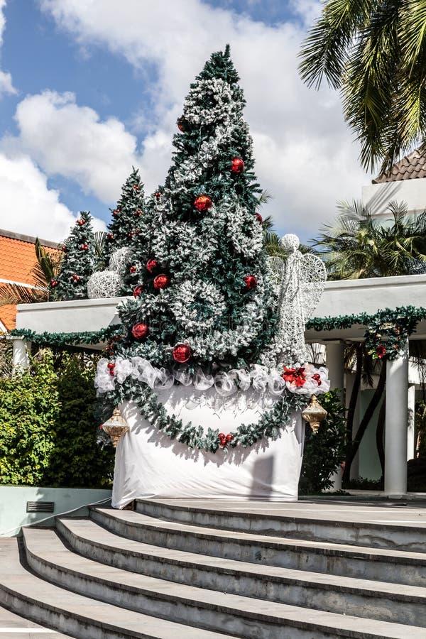 Punda en la Navidad fotos de archivo