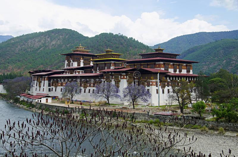 Pungtang Dechen Photrang伟大的极乐Dzong或宫殿  更加接近的看法 管理中心 Punakha Dzong 库存图片