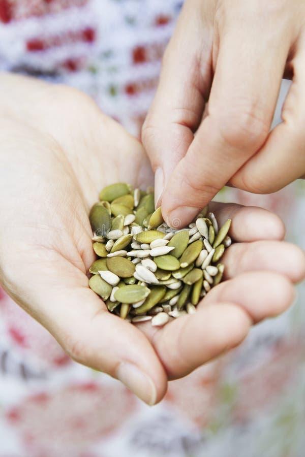 Punhado comer da mulher de sementes saudáveis imagem de stock