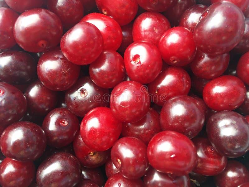 Punhado de bagas vermelho-maduras da cereja fotografia de stock
