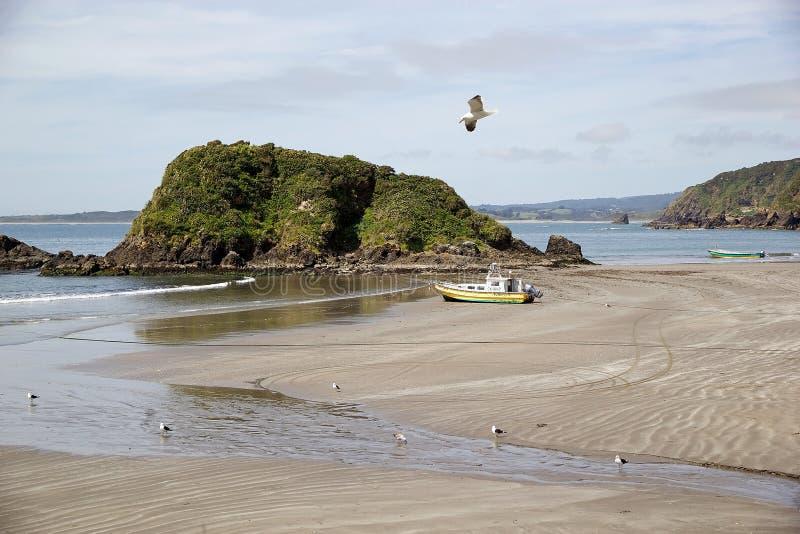 Punihuil strand, Chiloe ö, Chile arkivbilder