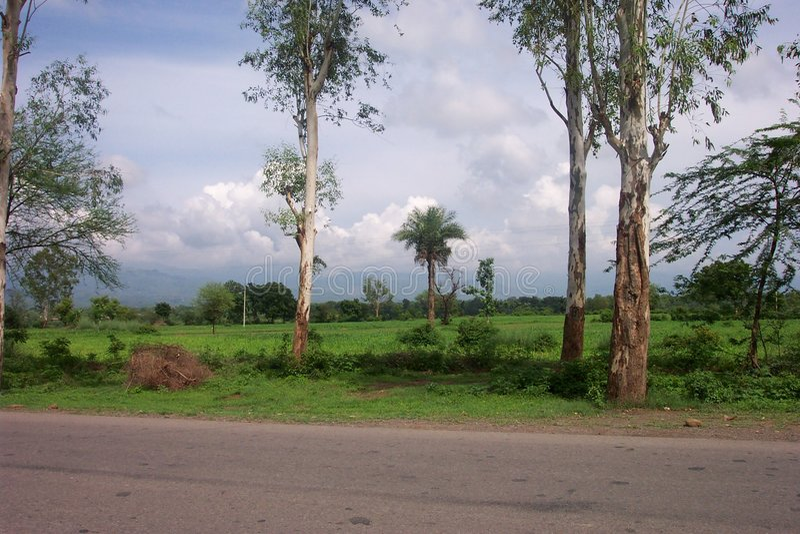 Punjab-Ebenen lizenzfreie stockfotografie