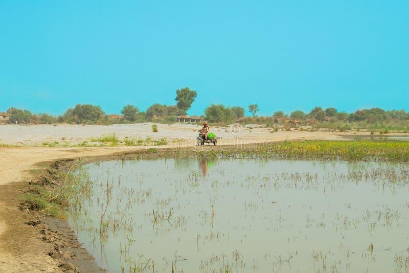 Punjab, Paquistão-junho 23,2019: um homem não identificado que conduz um riquexó do moto em uma área afetada da inundação foto de stock royalty free