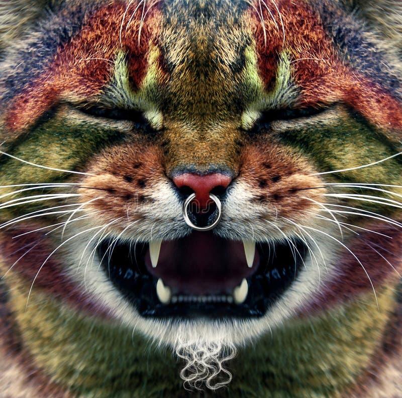 Punk del gatto