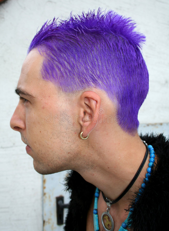 Punk do perfil imagens de stock royalty free