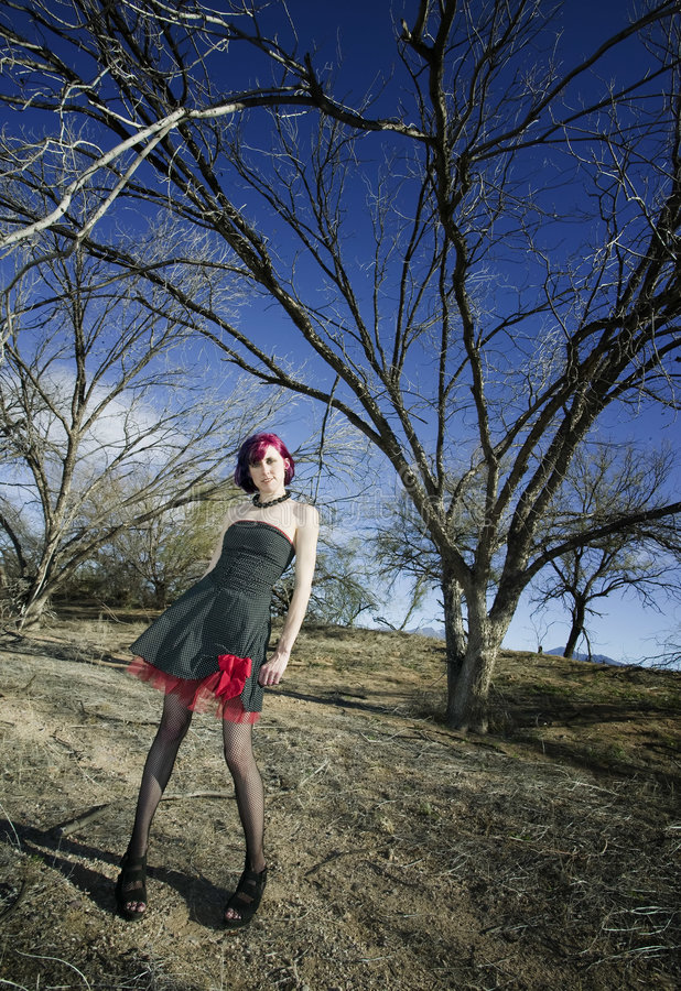 punk för modemodell royaltyfri fotografi