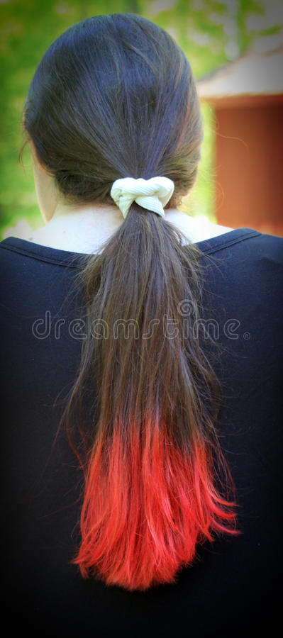 punk red för hår royaltyfri foto