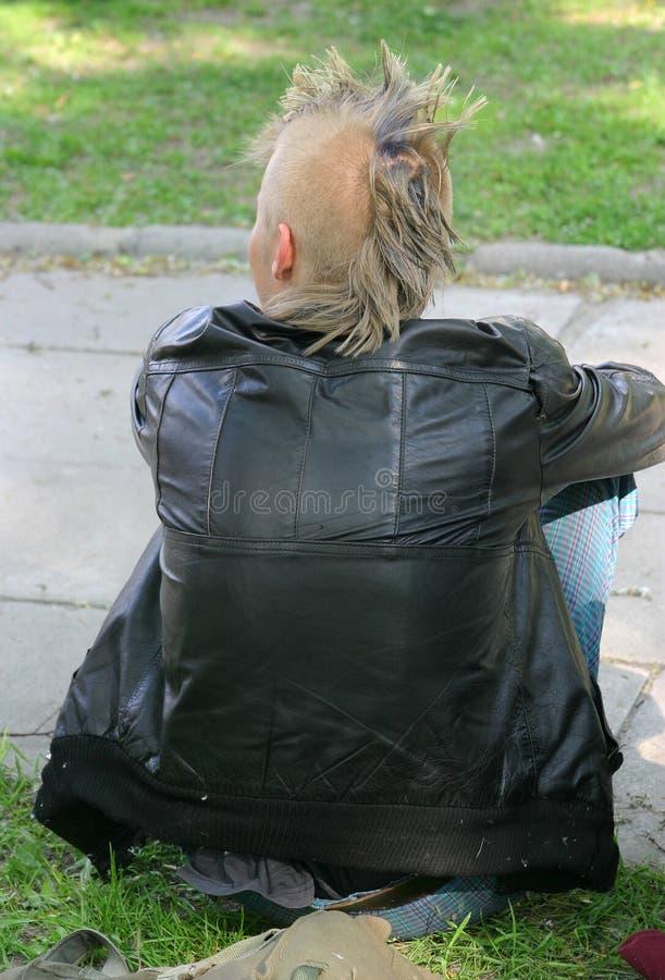 Punker op een gras stock foto's