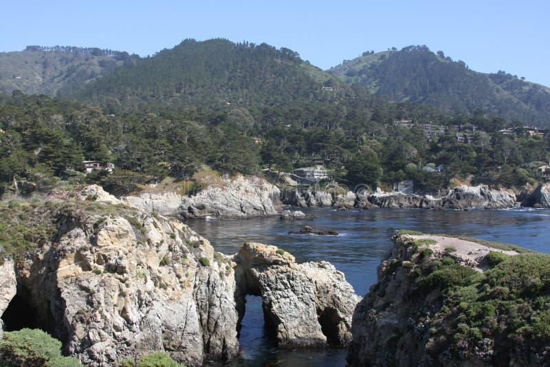 Punkt Lobos royaltyfri fotografi