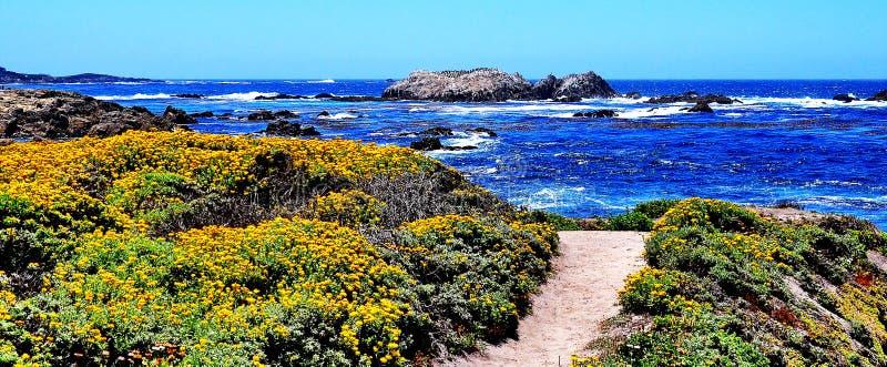 Punkt obserwacyjny przy otoczak plażą w Kalifornia fotografia stock