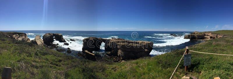 Punktu Buchon ślad panoramiczny - wildflowers, bluffuje i zawala się z widokiem na ocean zdjęcie royalty free