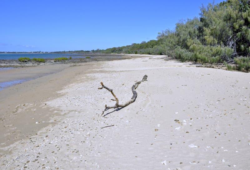 PunktVernon strand royaltyfria foton